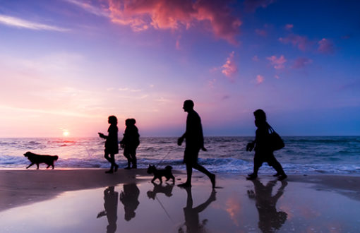 guiding your children safely through your divorce